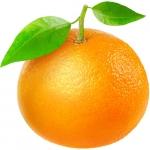 پرتقال ماندارین