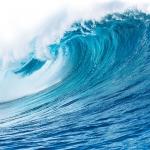 رایحه های اقیانوسی
