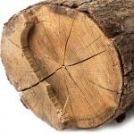 نت های چوبی معطر